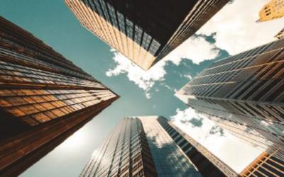 L'écologie de la donnée ou les entreprises face au risque perpétuel