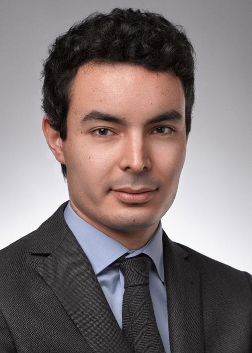 Mehdi Bouzouina